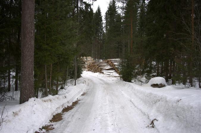 tallfors-road-better